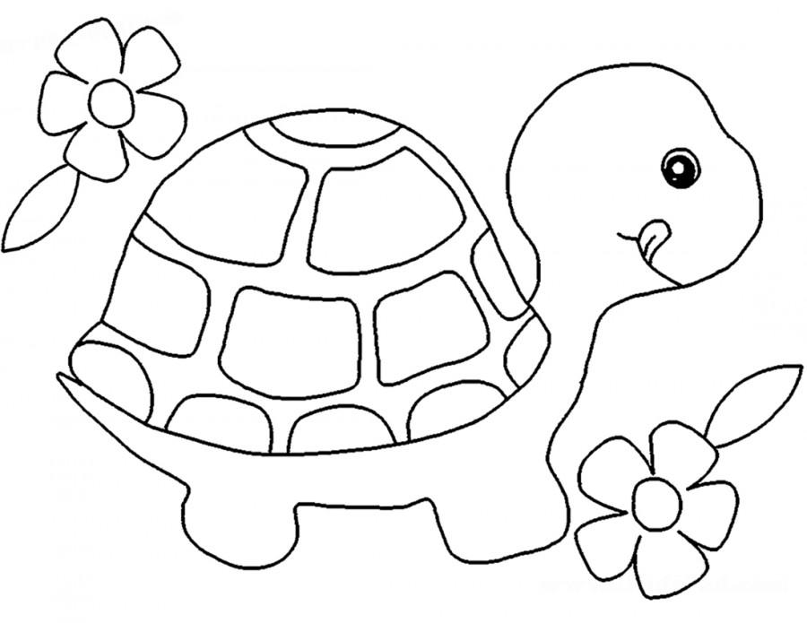 Черепаха и цветы - раскраска №10549 | Printonic.ru