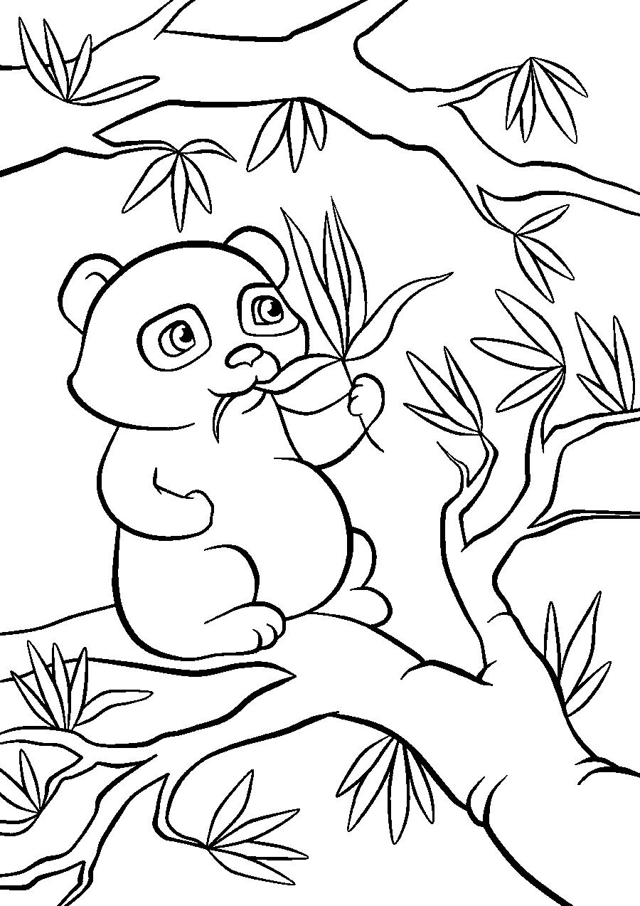 Панда на дереве - раскраска №2119 | Printonic.ru