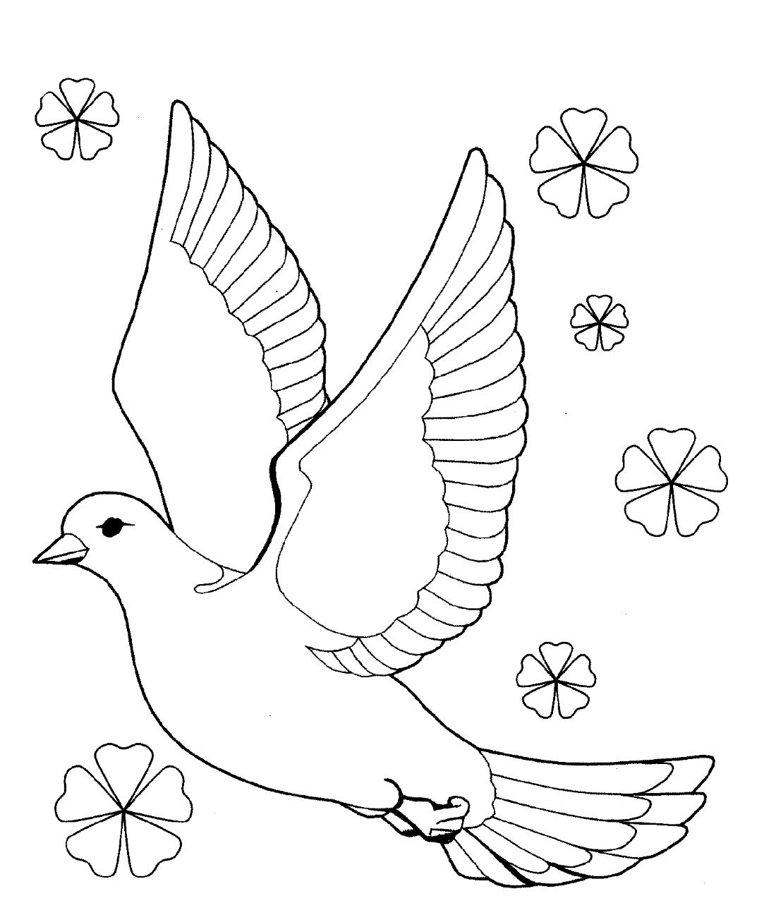 Картинки раскраски с голубями