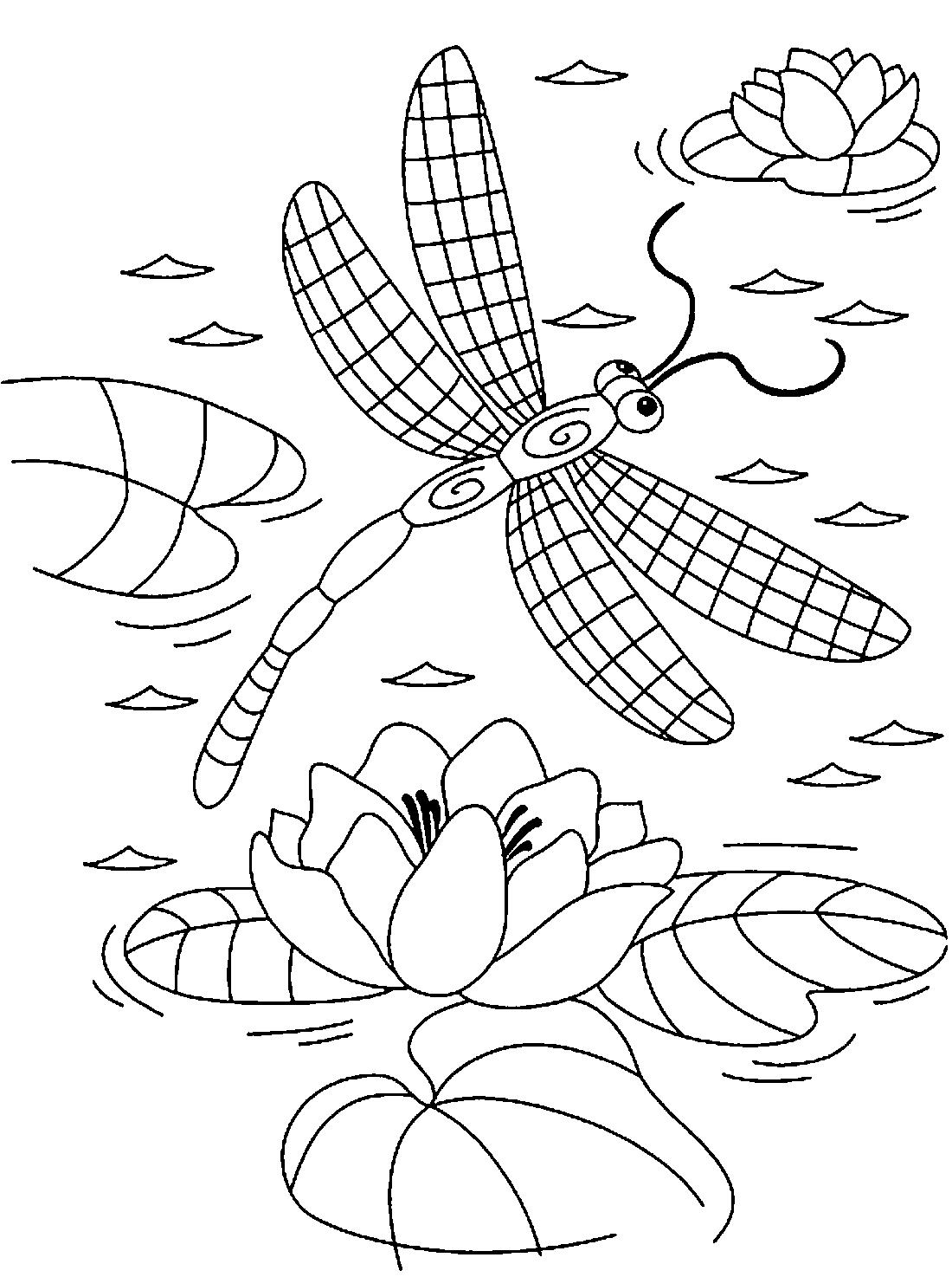 Стрекоза с крыльями в клеточку - раскраска №2125 ...