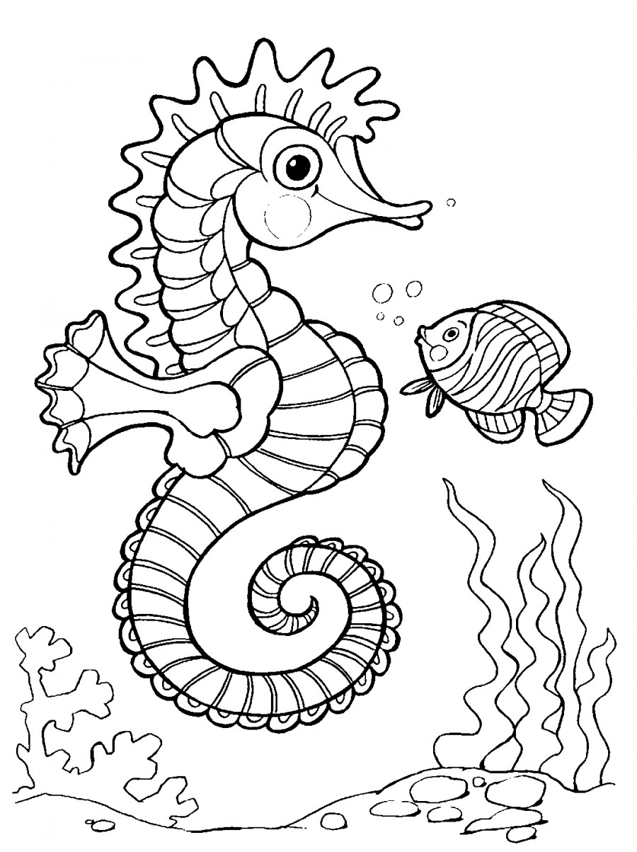 Морской конек и рыбка - раскраска №13279 | Printonic.ru