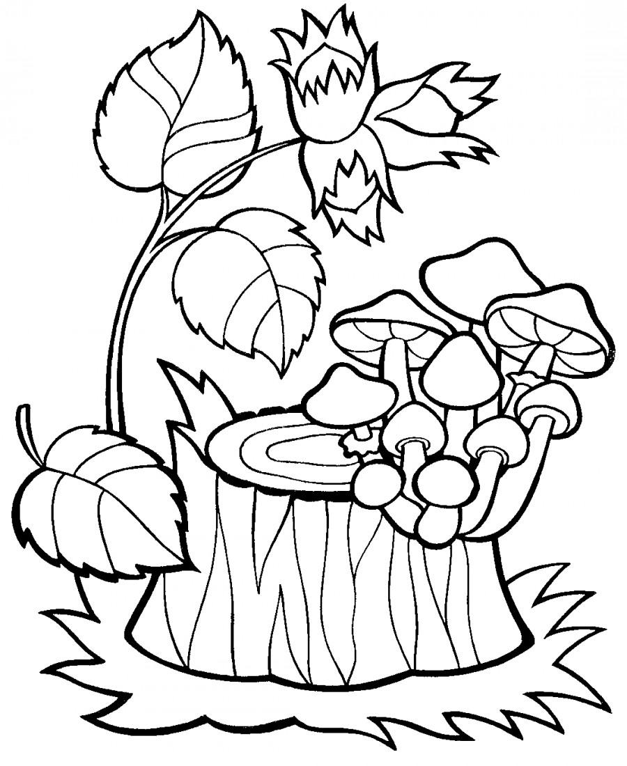 Осенние грибы - раскраска №14203 | Printonic.ru