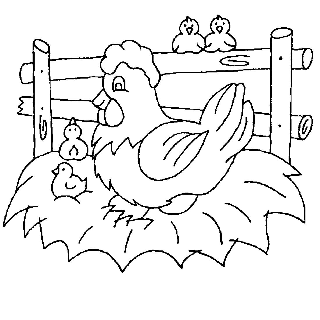 Раскраска курочка с цыплятами для малышей