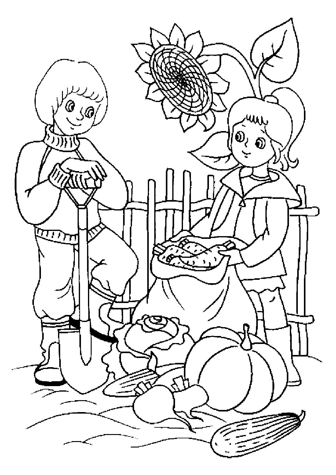 Дети собриают урожай - раскраска №4035   Printonic.ru