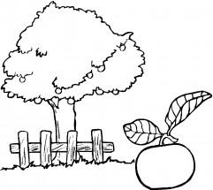 Раскраски деревья: распечатать или скачать бесплатно ...