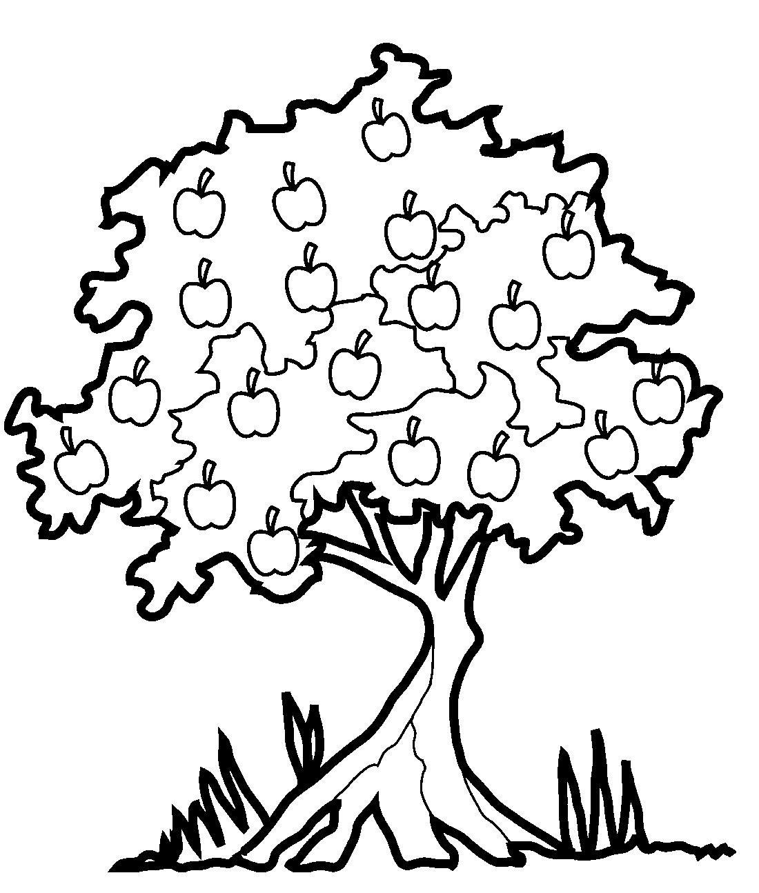 Яблоня с яблоками - раскраска №11642 | Printonic.ru