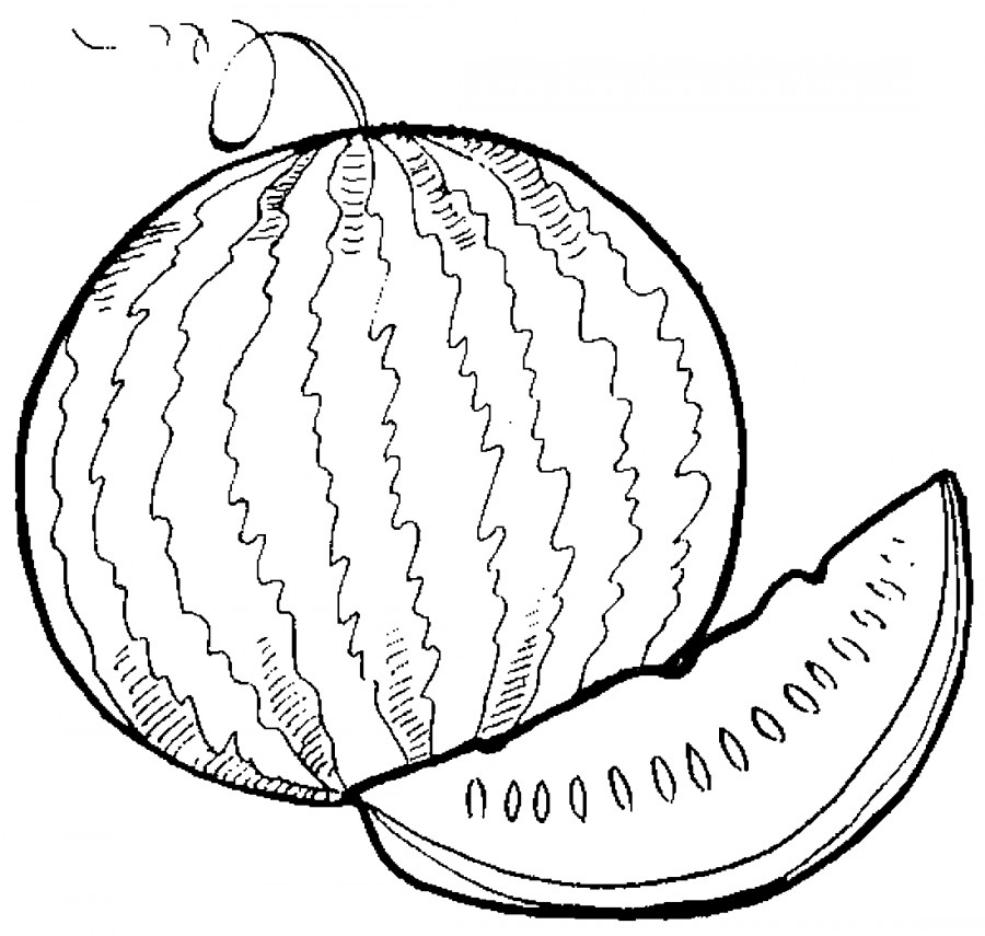 Вкусный арбуз - раскраска №10068 | Printonic.ru