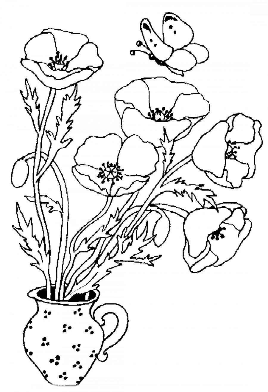 Маки в вазе - раскраска №4334 | Printonic.ru