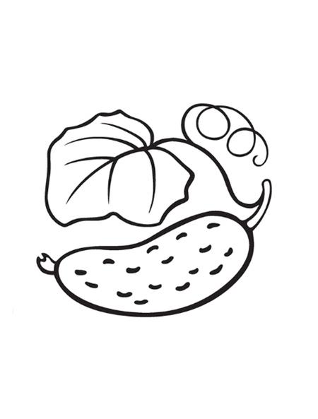 Обычный огурец - раскраска №3334 | Printonic.ru