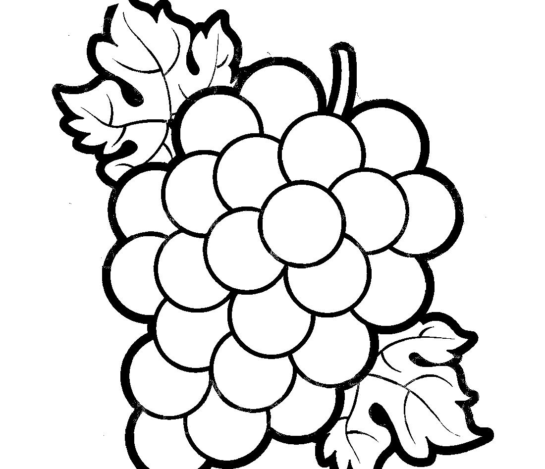 Красивый виноград - раскраска №10033 | Printonic.ru