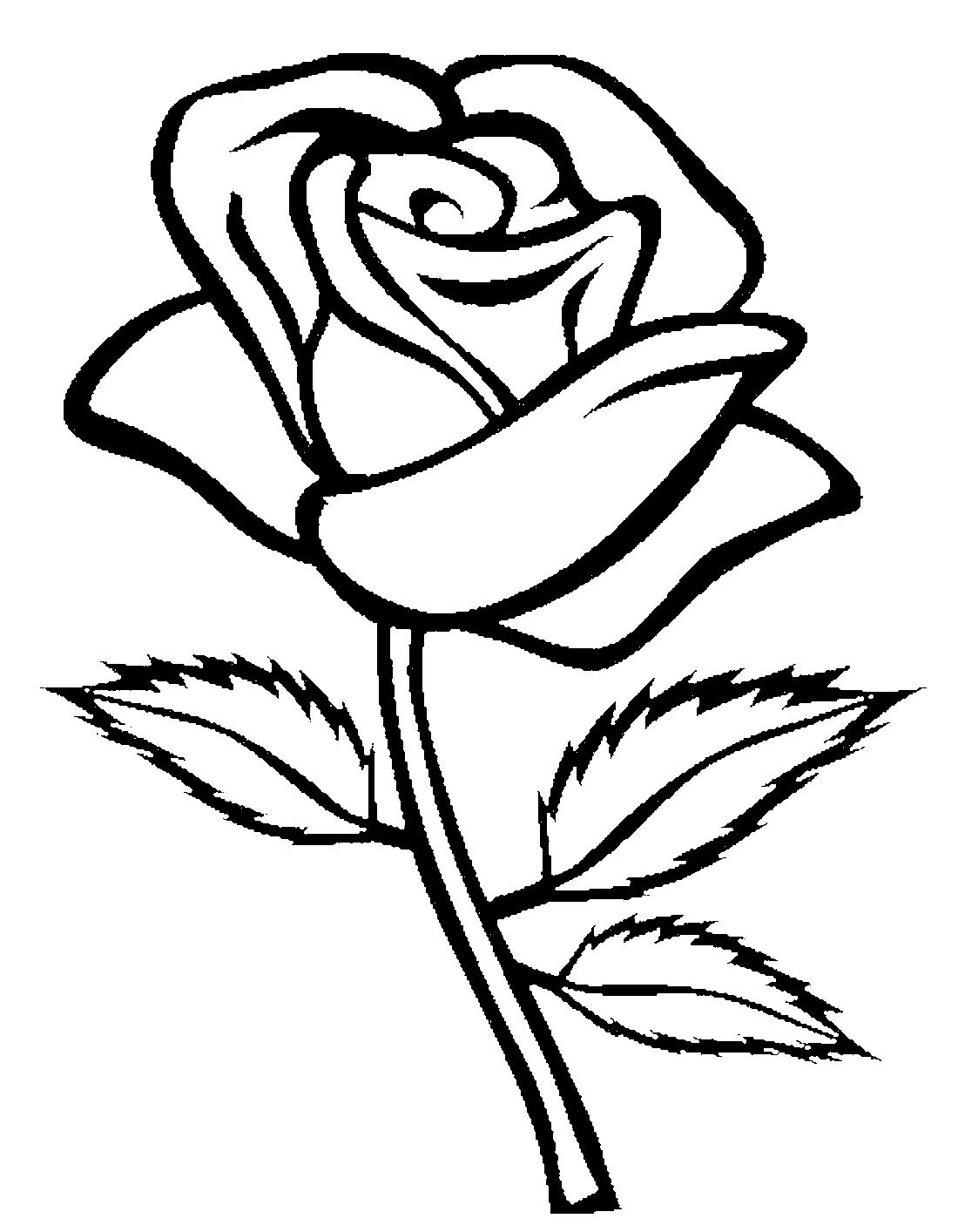 Розы раскраски