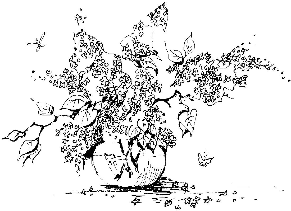 Сирень в стеклянной вазе - раскраска №5348 | Printonic.ru