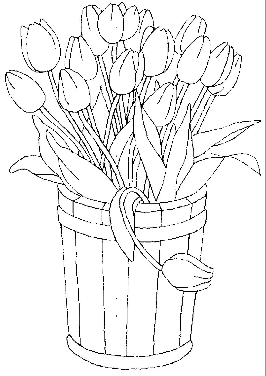 Тюльпаны в ведре - раскраска №14172   Printonic.ru