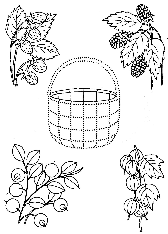 Ягоды и корзинка - раскраска №12522 | Printonic.ru