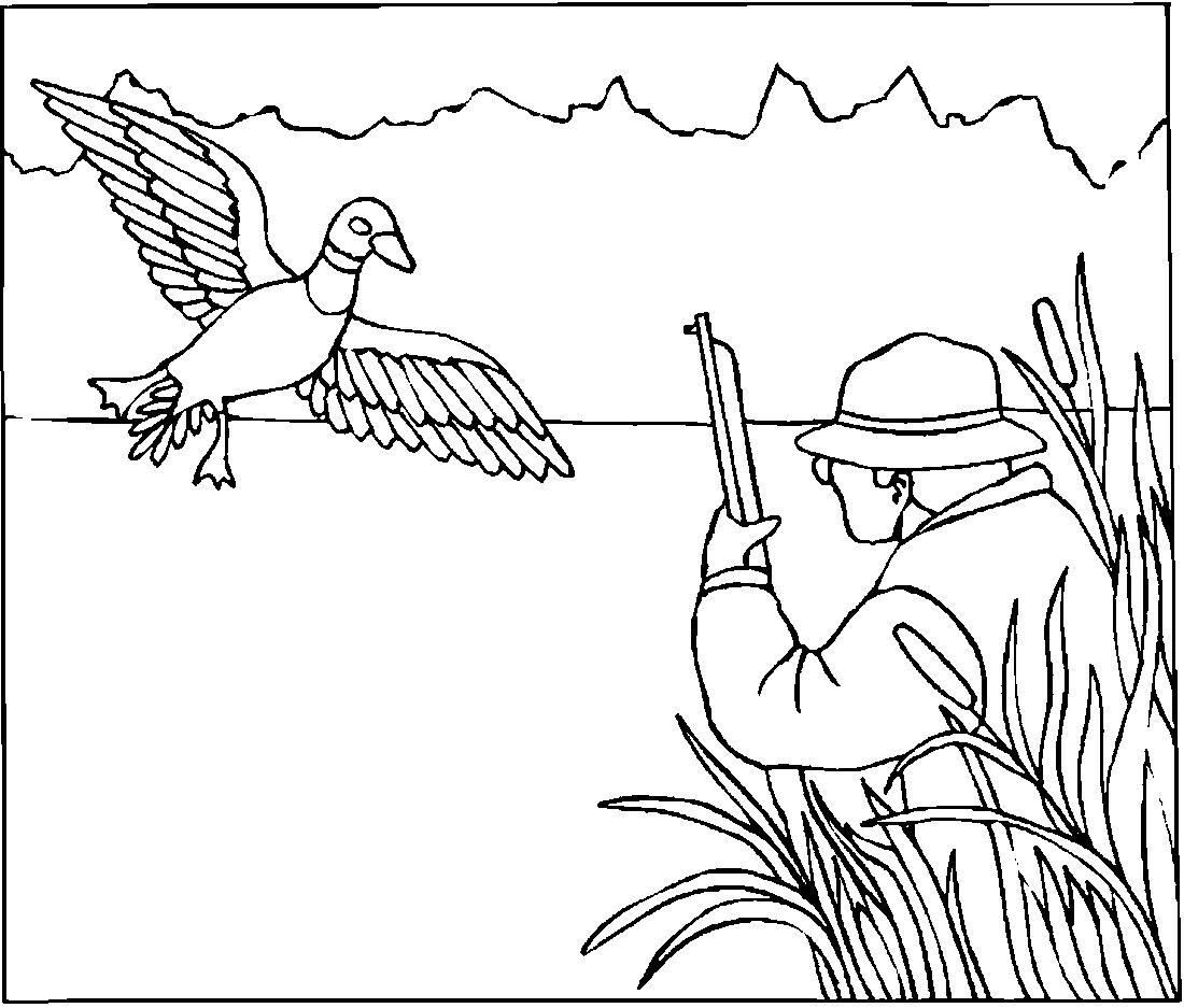 Охотник и утка - раскраска №11405 | Printonic.ru