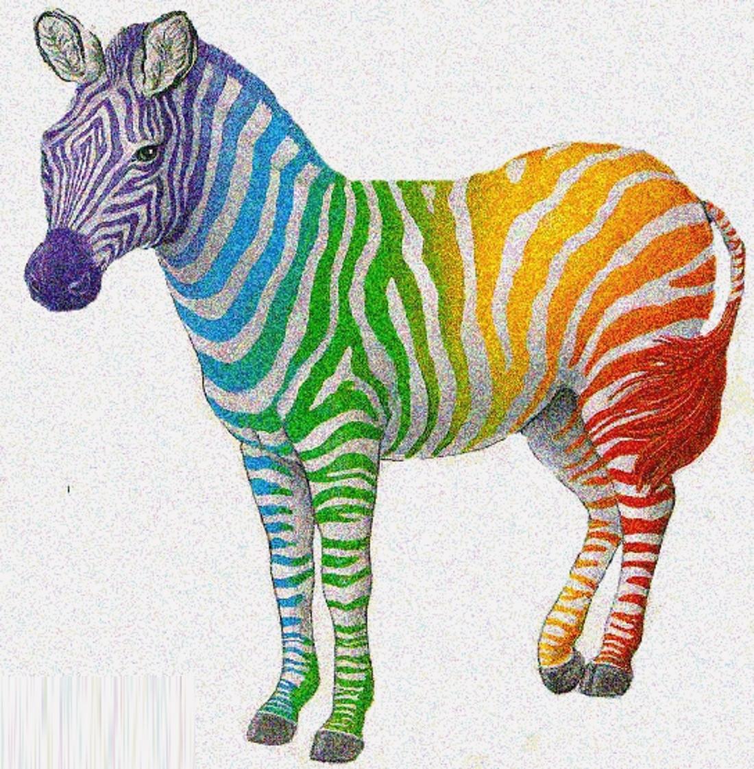 картинка радужная зебра это