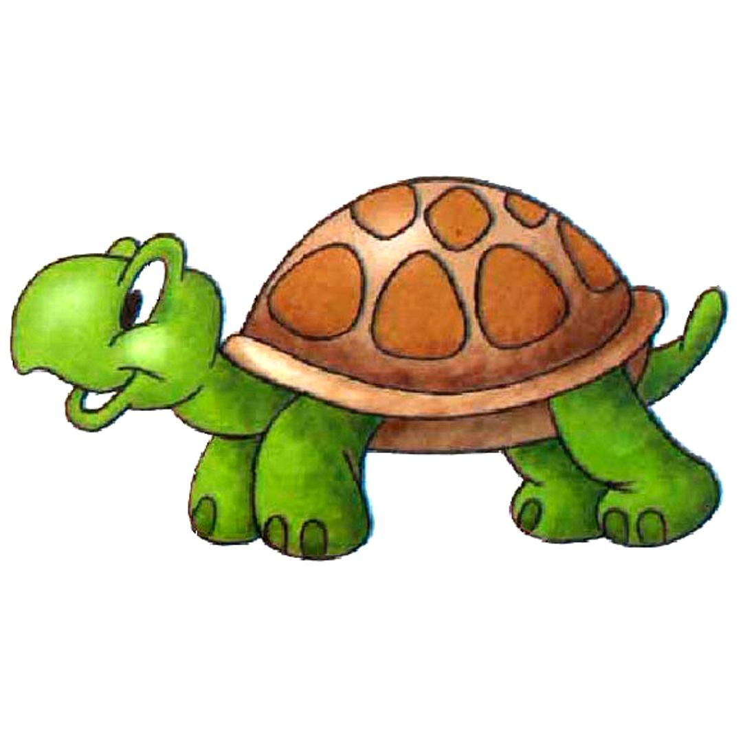 черепаха рисунок фото котята красный