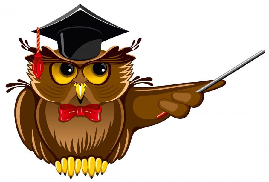 Строгая сова в шляпе и с указкой - картинка №9959 ...