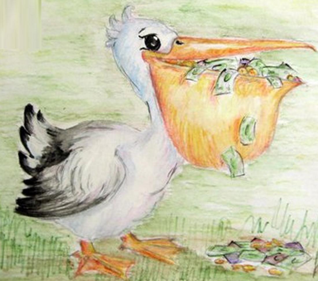 Смешные фото пеликана оказался домовёнком