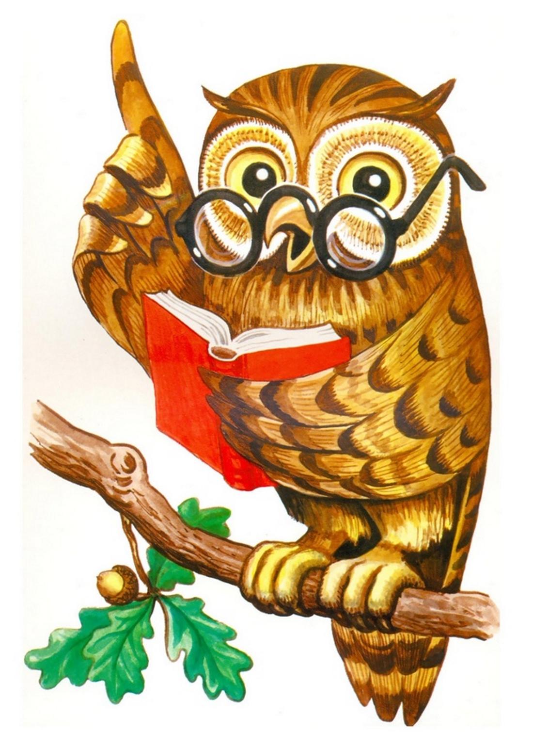 героиня сова как символ мудрости картинка чем купить