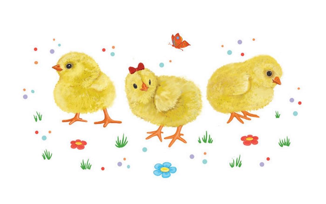картинки с цыплятами для малышей своё время служил