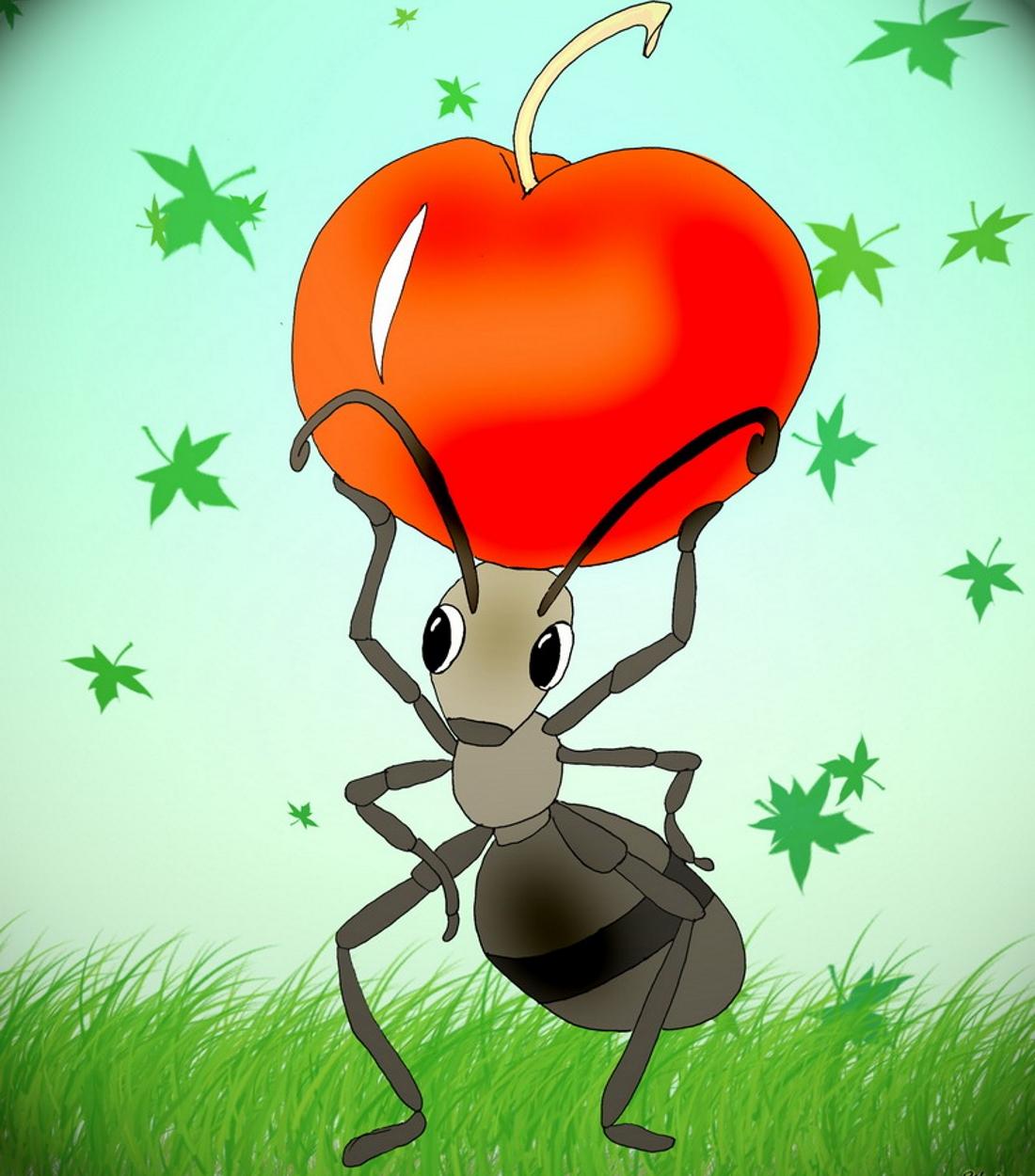 картинка с изображением муравья семян меньше миллиметра