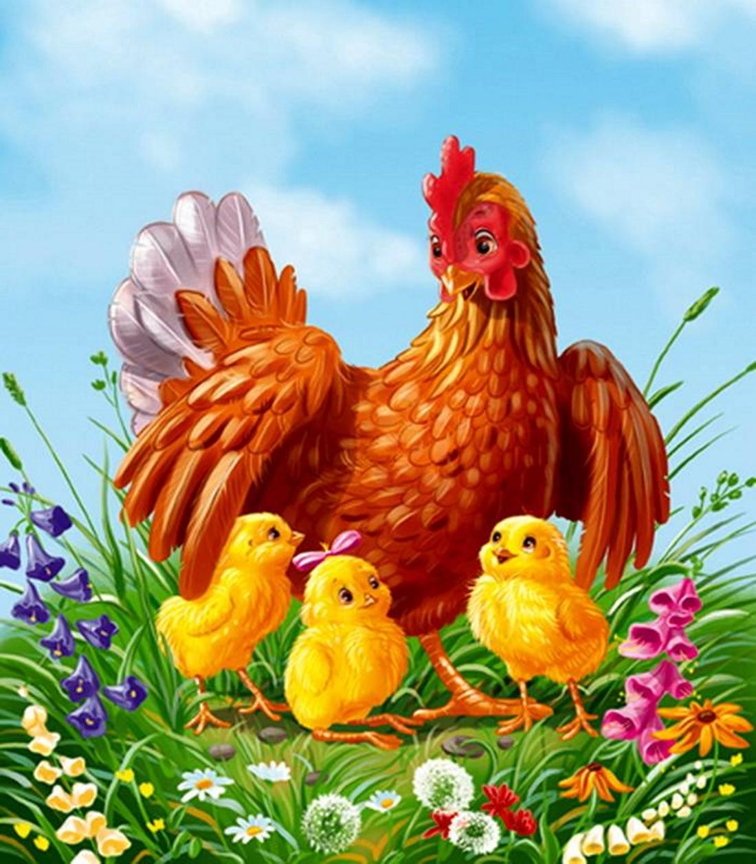 Курица с цыплятами картинки мультяшные