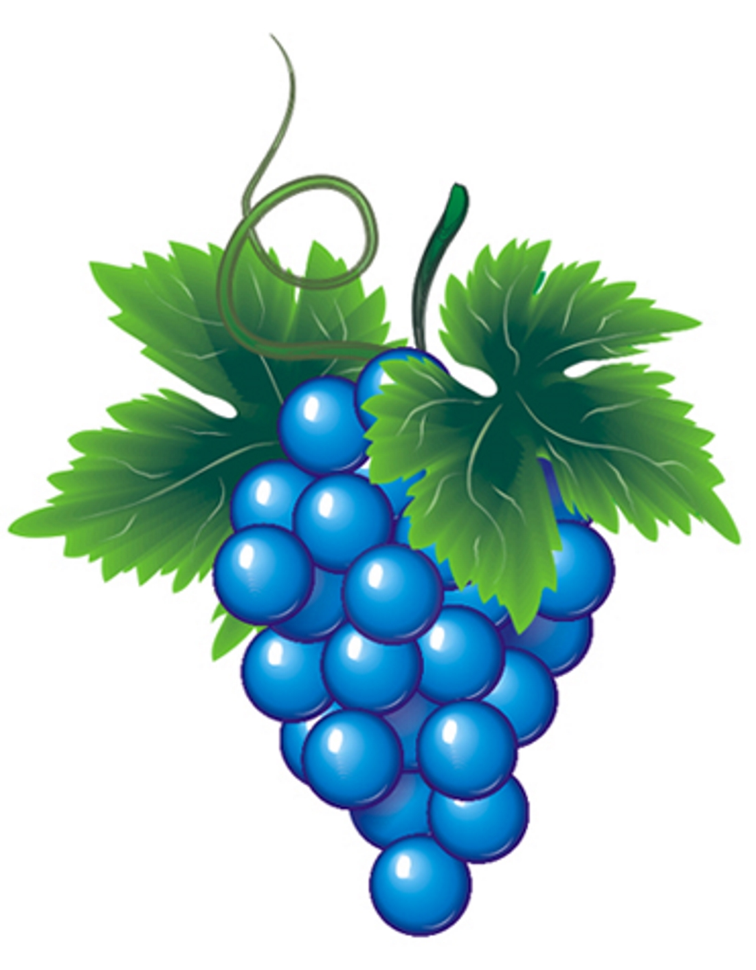 Виноградинка картинка для детей