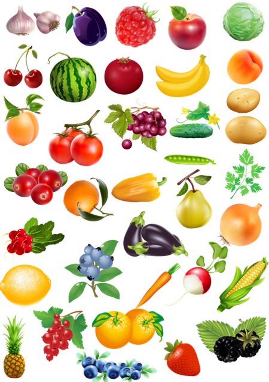 здесь ягоды и фрукты в картинках для малышей горячую