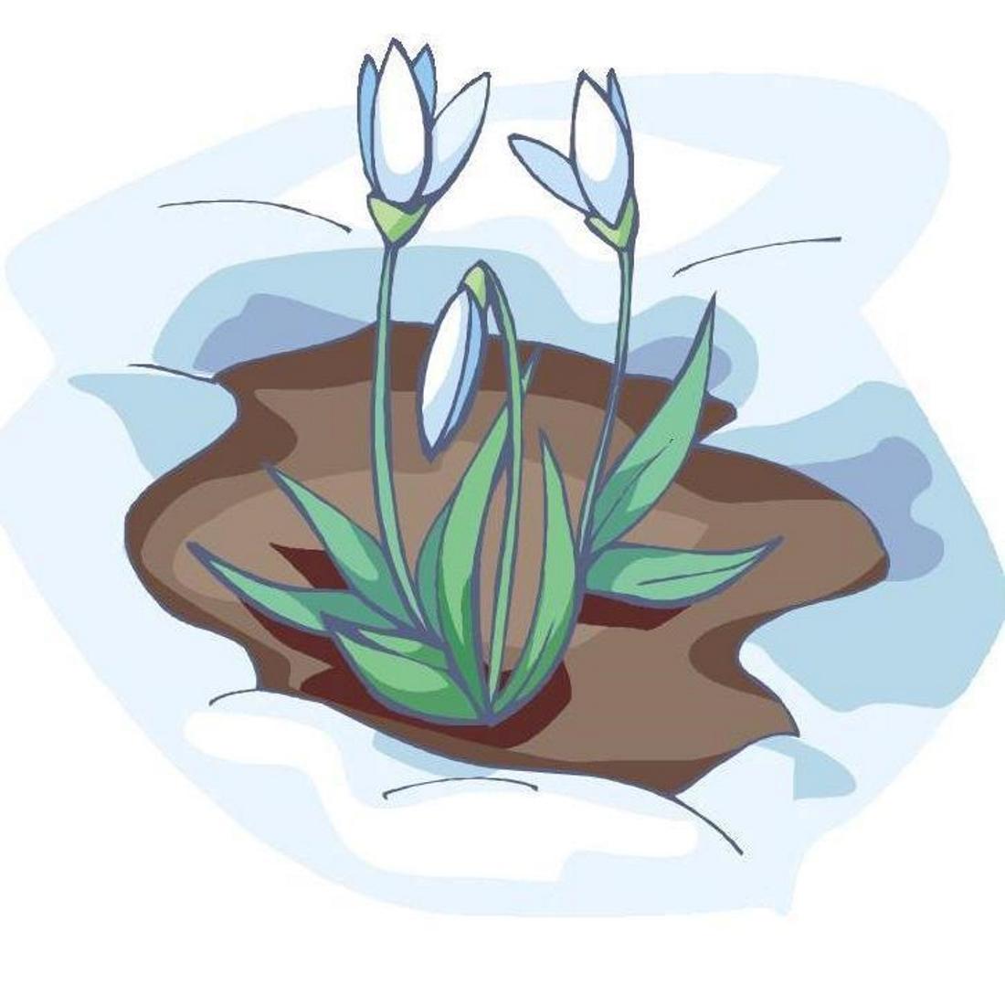 Картинка подснежники для детей в детском саду