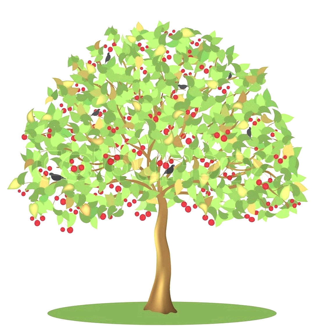 Дерево вишня картинки для детского сада