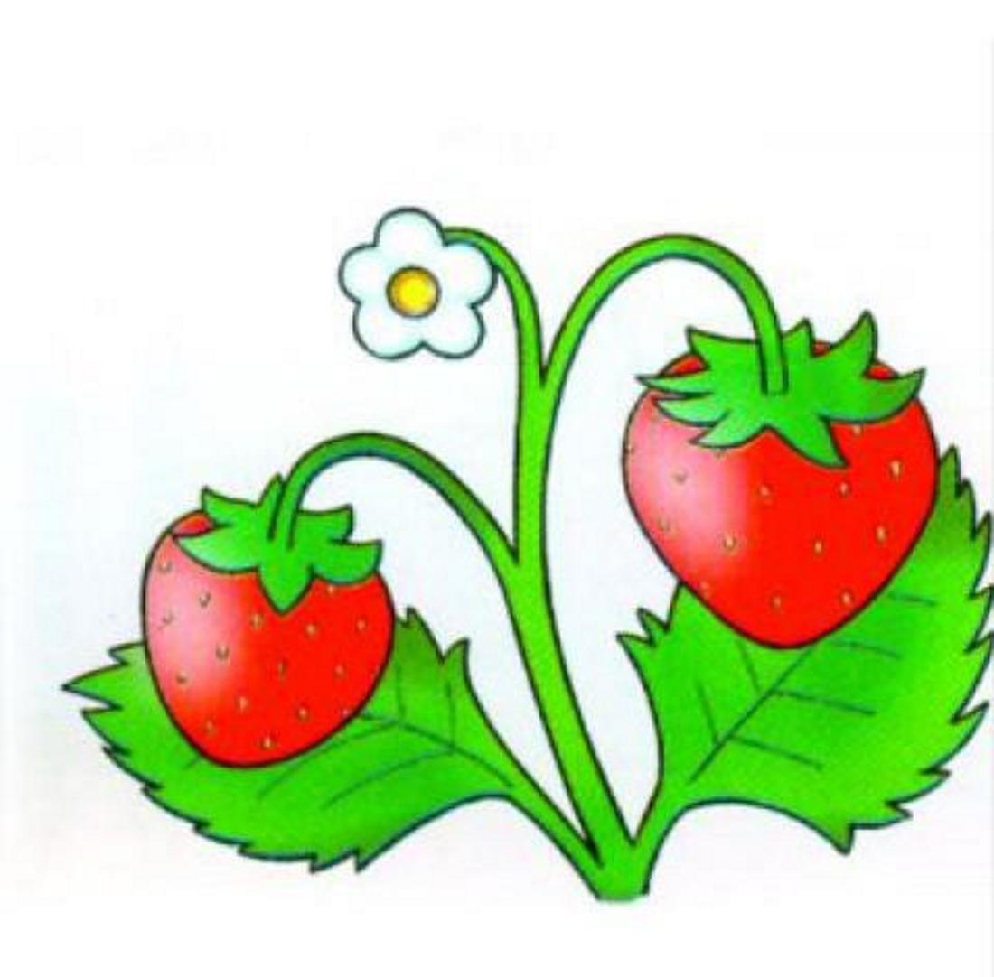 Картинки ягодка земляничка