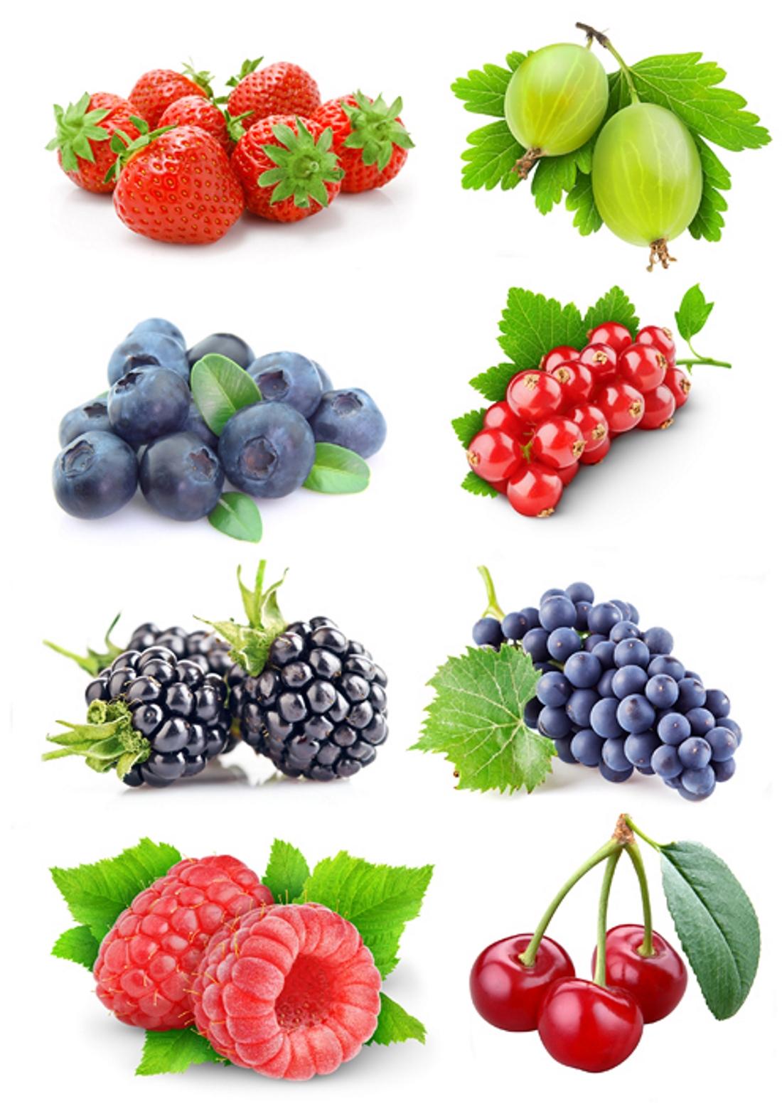 рисунки с ягодами каждый
