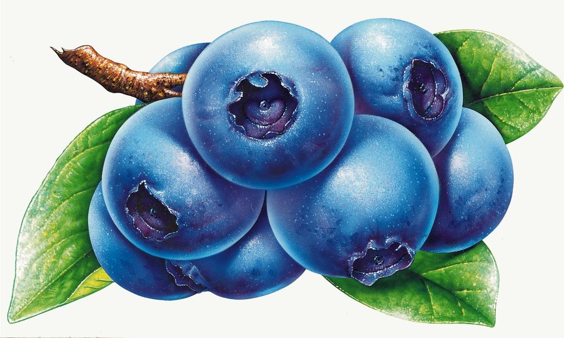 Голубой цвет картинка для детей