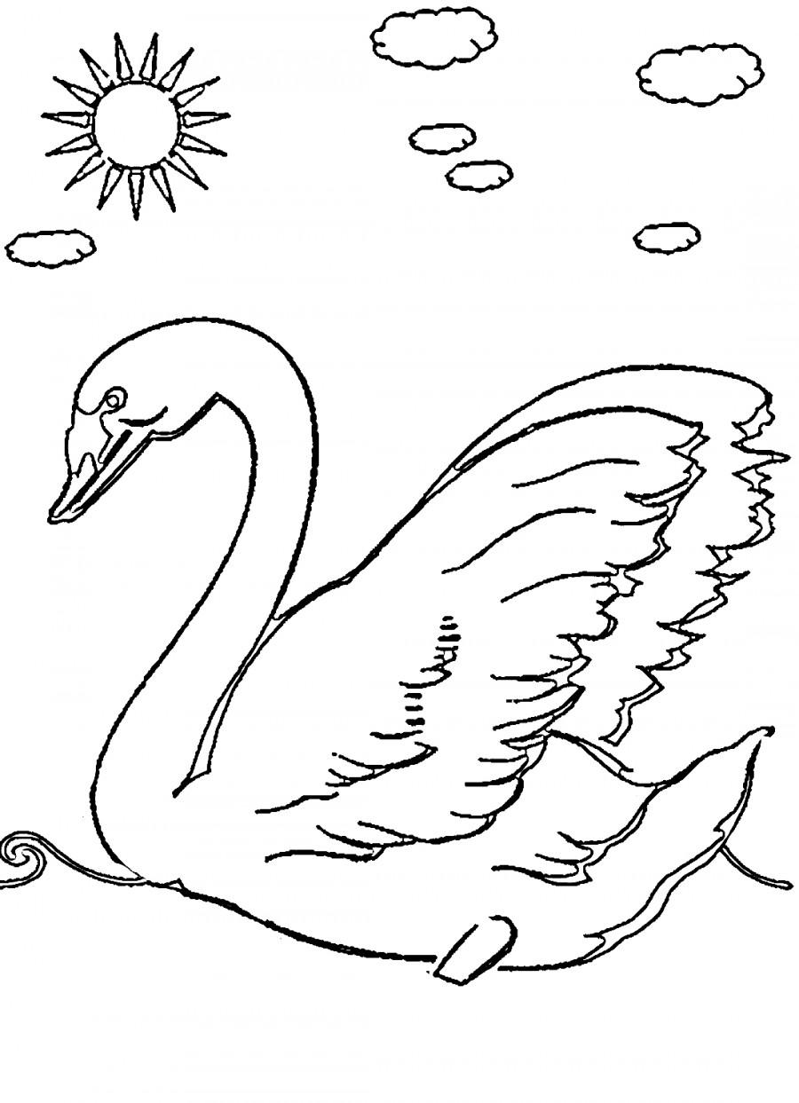 Лебедь и солнышко - раскраска №2130 | Printonic.ru
