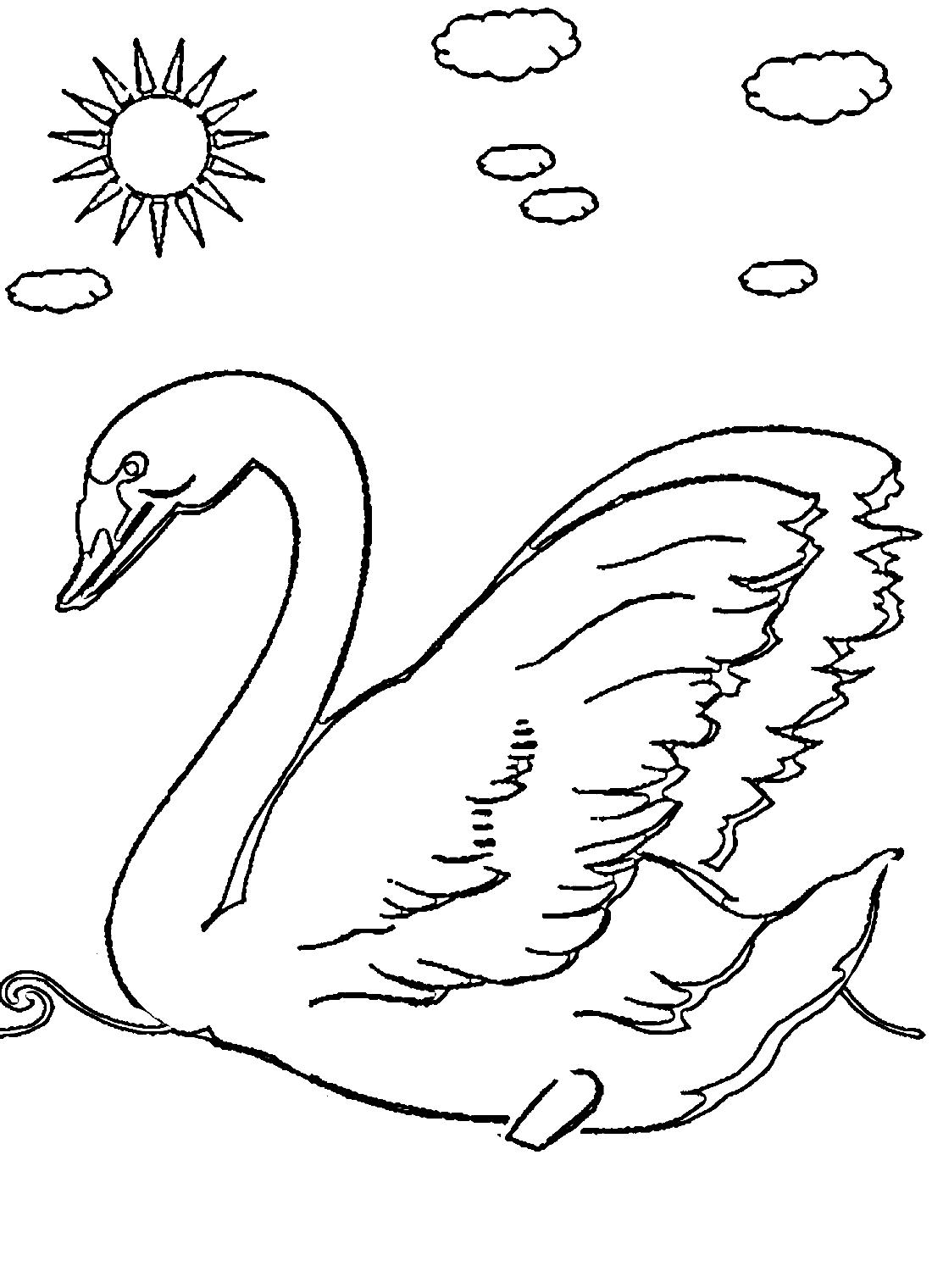 Раскраска лебедь - 9