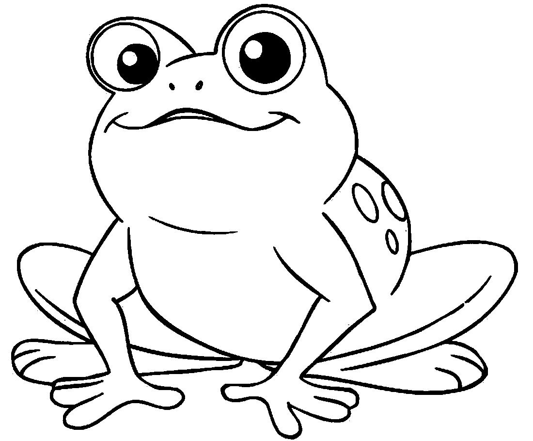 лягушка раскраска картинки для детей