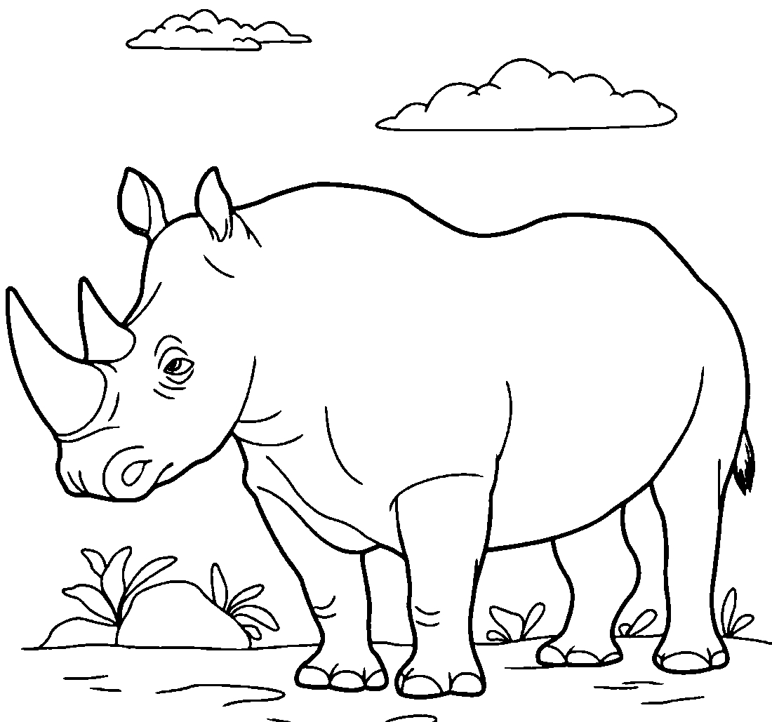 носорог на лужайке раскраска 2789 Printonic Ru