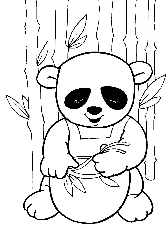 Животные панда раскраска