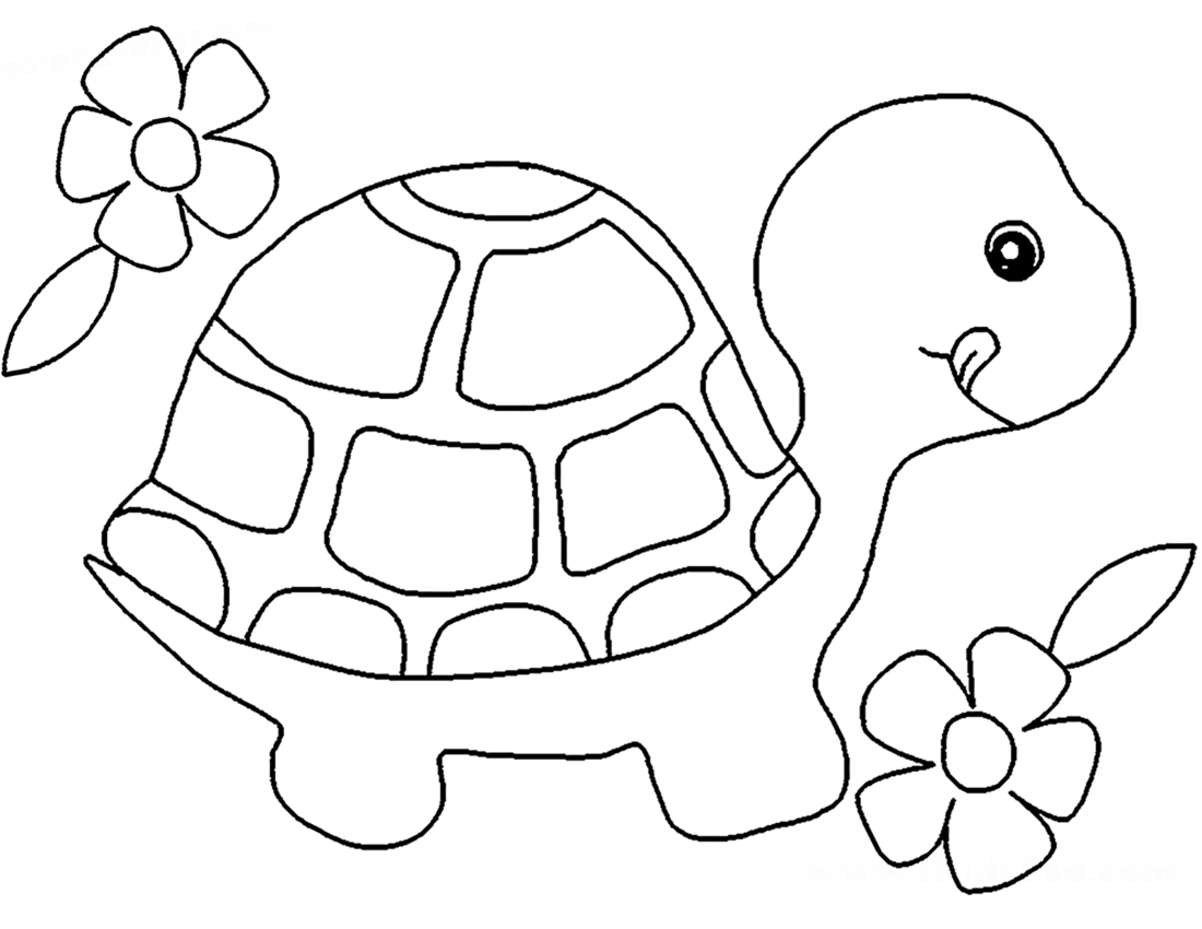 Черепаха и цветы - раскраска №10549   Printonic.ru