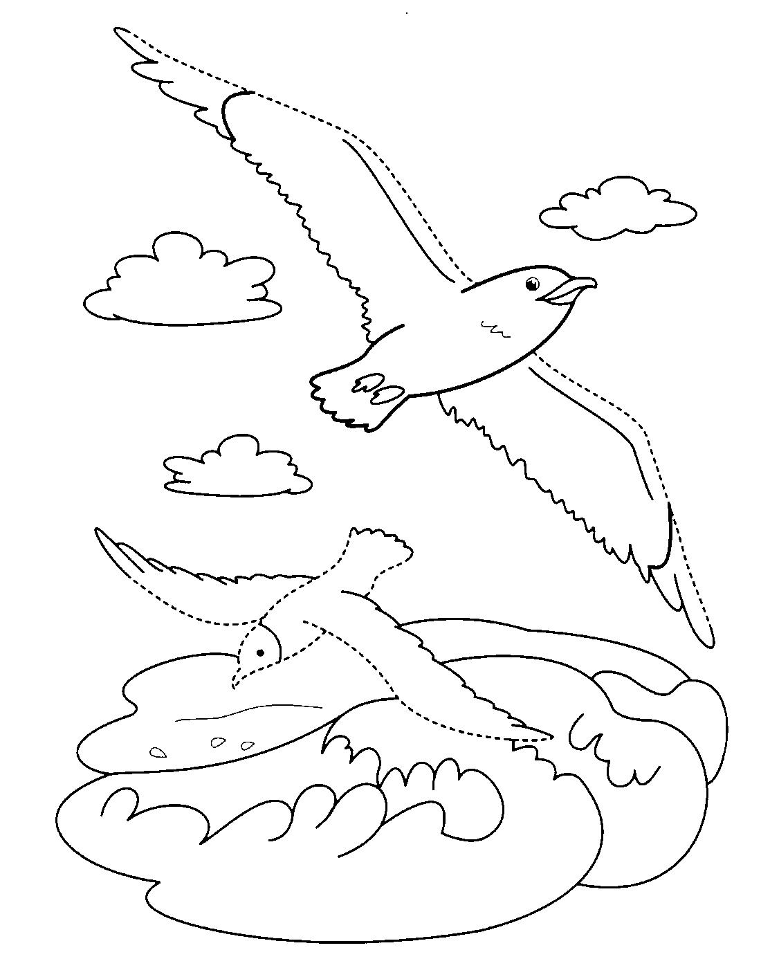 Перелётные и зимующие птицы названия интересные факты