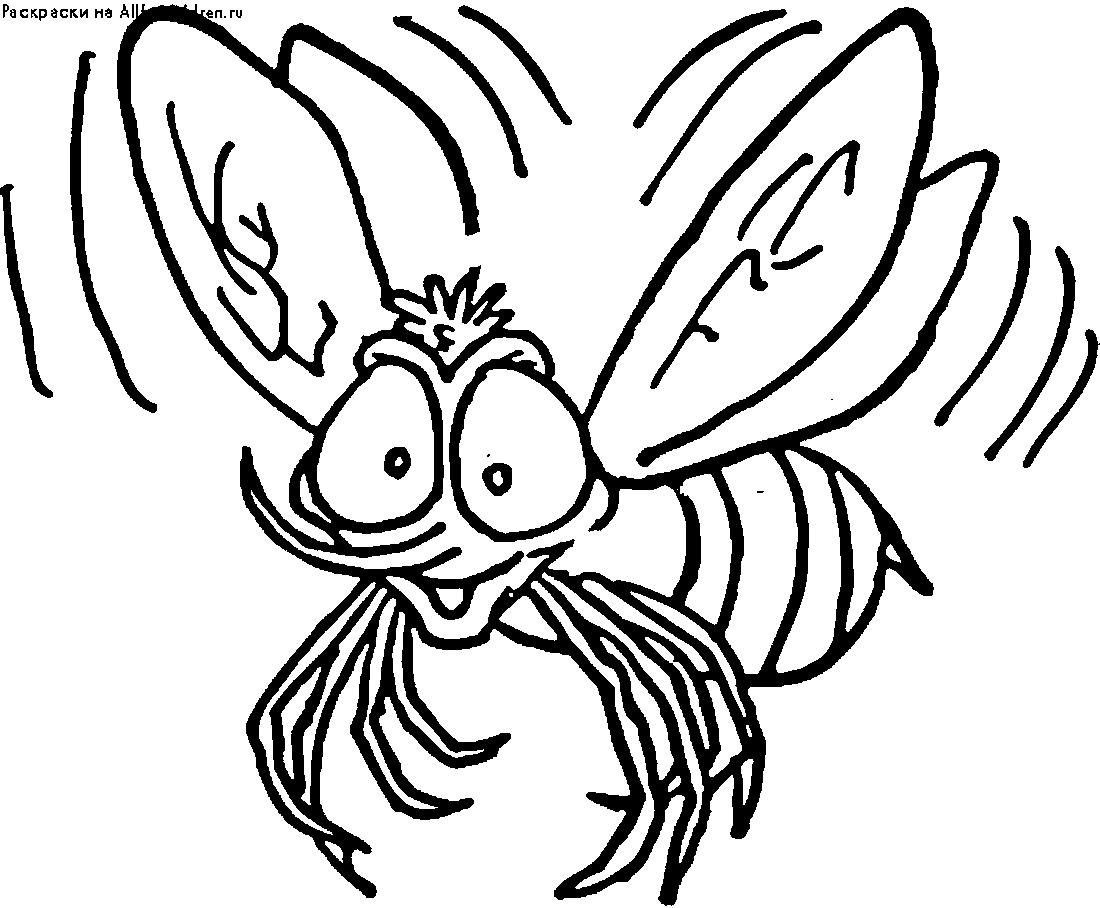 радостная муха раскраска 2112 Printonic Ru