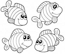 раскраски рыба клоун распечатать или скачать бесплатно