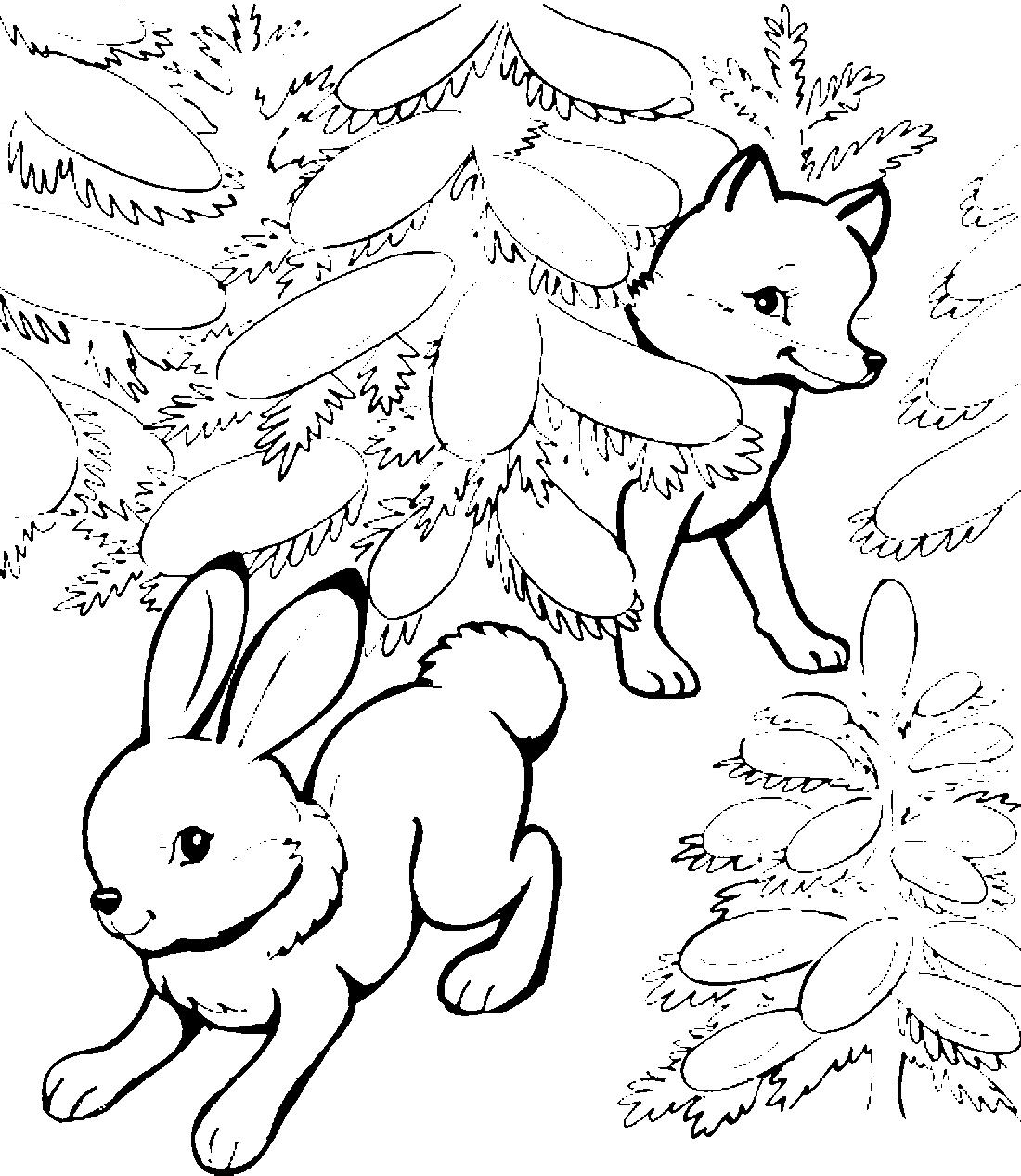 Зайцы и лиса раскраска для детей