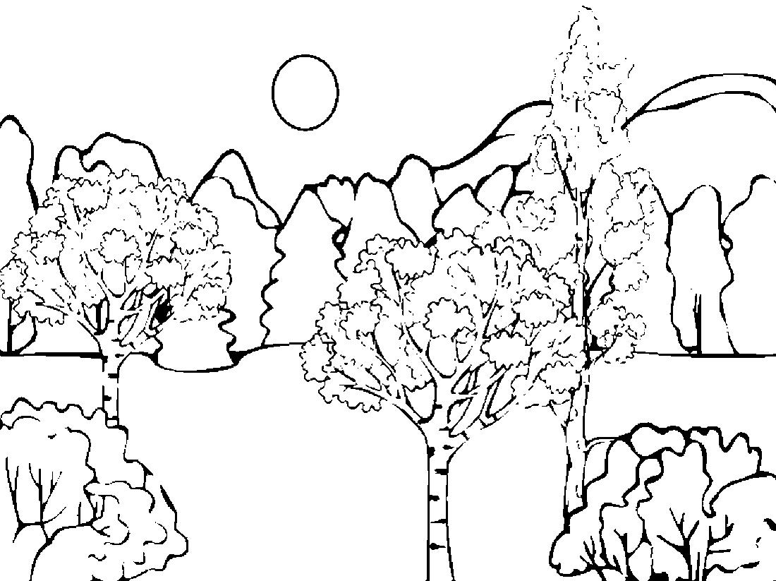 Раскраска Осень Картинка
