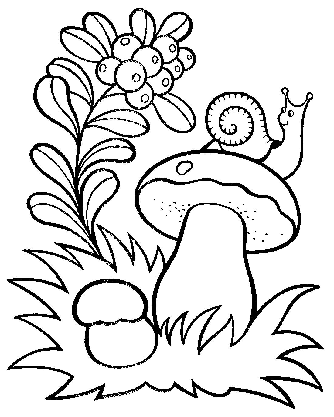 Картинки Природа Для Детей Раскраски