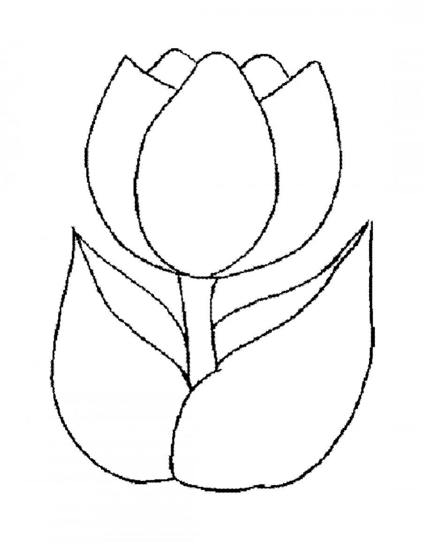 средство для похудения ecopills raspberry