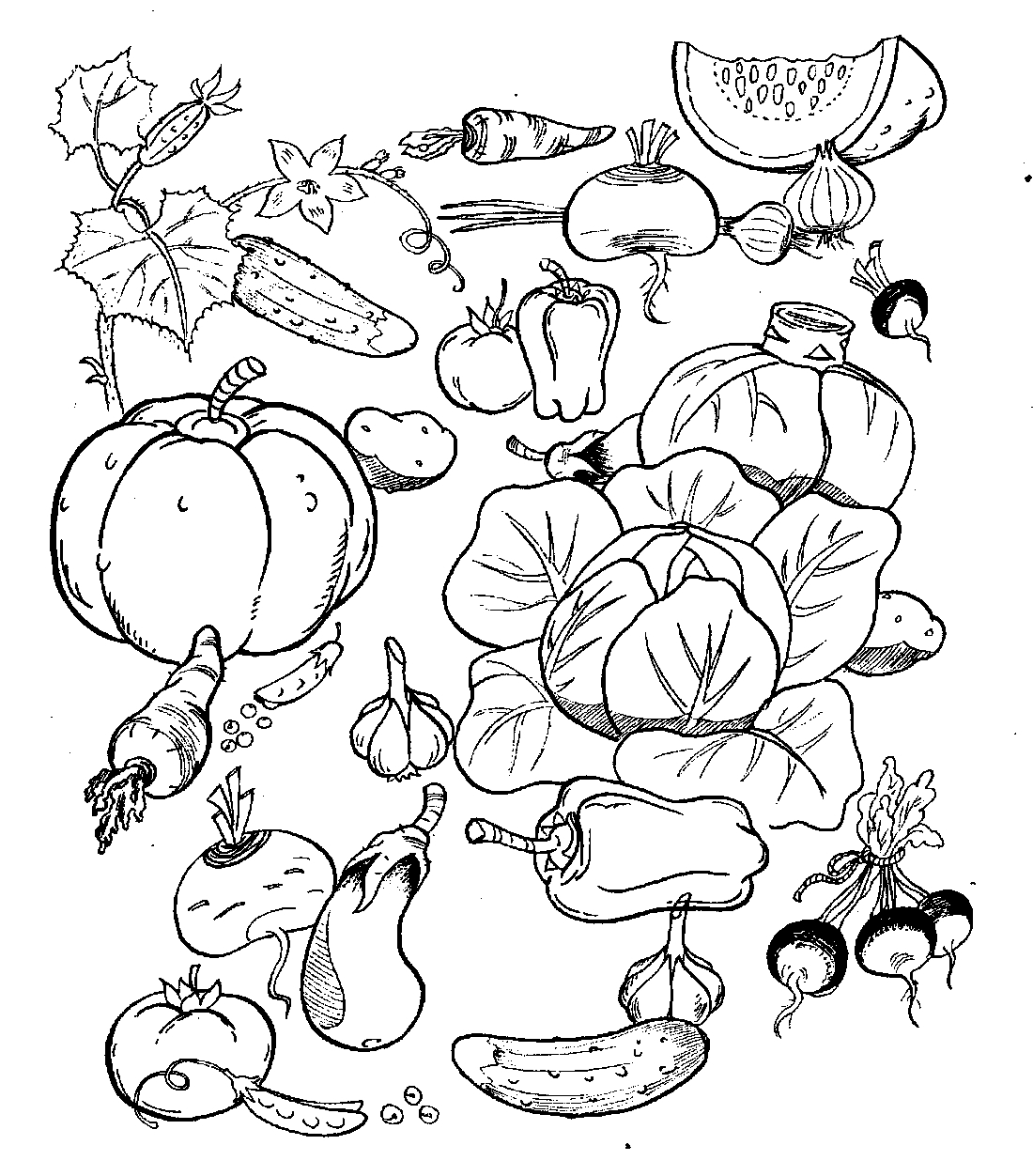 Раскраски фрукты и овощи онлайн 32