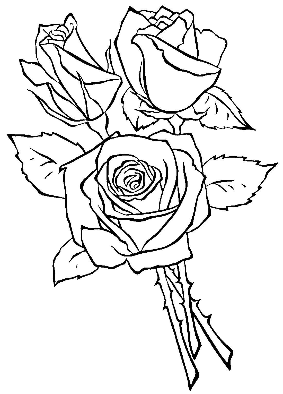 Три розы  раскраска №9411  printonicru