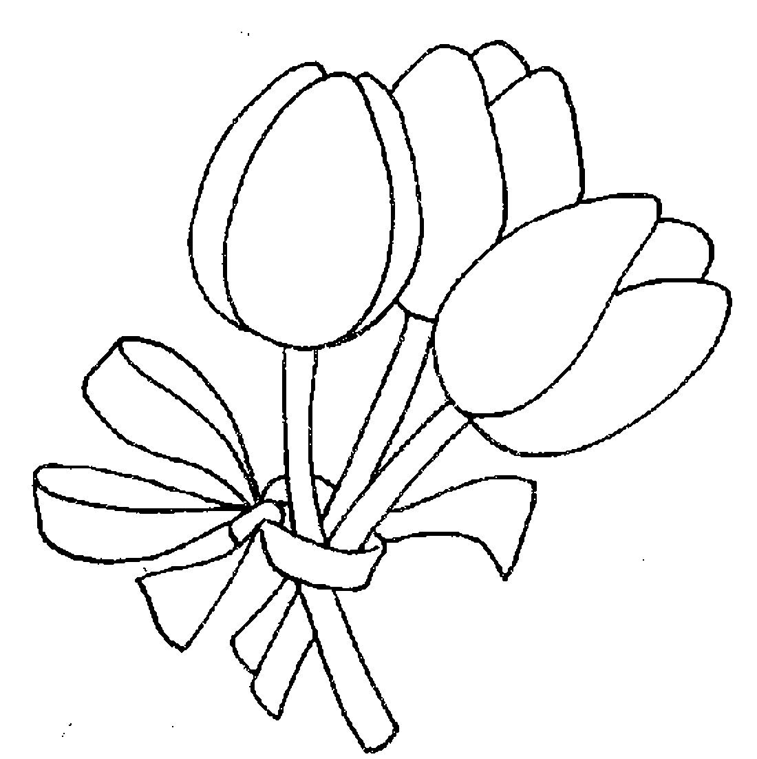 Раскраска тюльпан цветы
